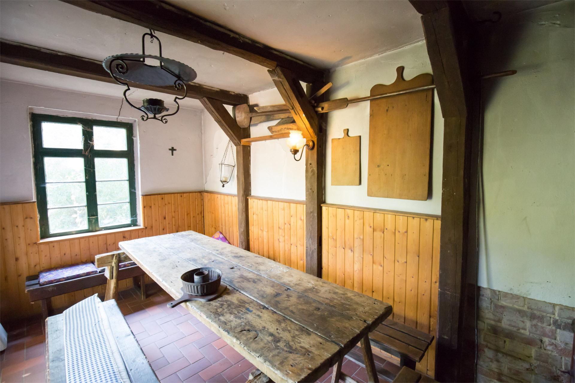 backhaus2